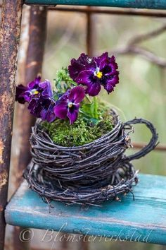 """Good Screen Pansies in containers Strategies Pansies will be the vibrant plants with """"faces."""" Your cool-weather beloved, pansies are fantastic for bo Garden Crafts, Garden Projects, Garden Art, Garden Design, Herb Garden, Garden Paths, Vegetable Garden, Garden Landscaping, Diy Crafts"""