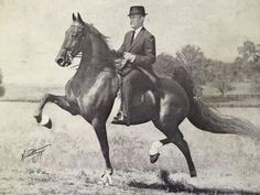 CH My-My and Frank Bradshaw graced the December, 1965 cover of The National Horseman.