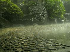 Rain in France.