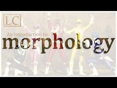 MORPHOLOGY. This video introduces the idea of morphology and explains the idea of things like morphemes, bound morphemes, free morphemes, content words, function words, bound roots, affixes, and the like.