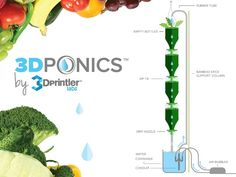 Free Hydroponics System - All 3Dponics source files - 3D-printable Modular Herb, Vegetable or Flower Urban Growing System - Recycle and Reus...