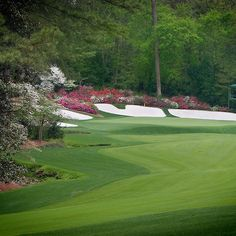 Augusta Georgia Amen Corner Golf So Proud Of My Cousin Walker Inman.First Augustan to Play the Master. Recent PGA Hall Of Fame Inductee. Golf Images, Augusta Golf, Masters Tournament, Golf Pga, Augusta Georgia, Masters Golf, Golf Tips, Fine Art America, Golf Courses