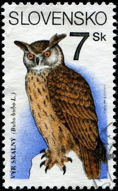 The Eurasian eagle-owl (Bubo bubo) sometimes called the European eagle-owl . Stamp from Slovakia.