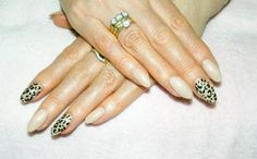 "Shellac in ""Bare Chemise"" with gold leopard feature nails."