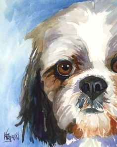 Looking for the perfect Shih Tzu Art to brighten any room? Need to spice up your walls with a dash of color? But they don't have to be when you display this stunningly colored Shih Tzu Art by Ron Krajewski. Art Watercolor, Watercolor Animals, Watercolor Portraits, Shih Tzu Hund, Shih Tzu Dog, Shih Tzus, Contemporary Abstract Art, Dog Portraits, Animal Paintings
