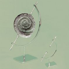 Fossil or mineral display stands, from University Products
