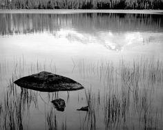 by Ansel Adams