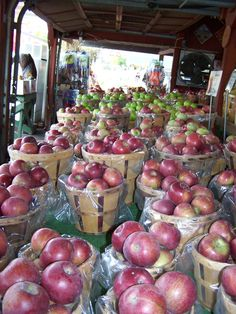 Upstate NY apples are the best!
