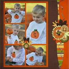 Digital: The Pumpkin Patch