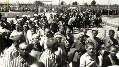 Los Ultimos Dias de Anne Frank, Español Latino