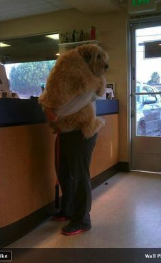A little nervous at the vet. Too cute!