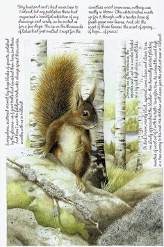 Marjolein Bastin - there's a very cozy squirrel's nest in Finland.