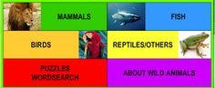 Nuestras cosas en Familia: Tipos de animales (en inglés)