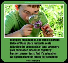 Whatever education is...