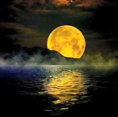 Beautiful moon over the water Moon Photos, Moon Pictures, Sun Moon, Stars And Moon, Moon Rise, Photo Voyage, Shoot The Moon, Moon Magic, Beautiful Moon