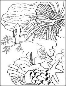 Image result for Simple Coral Reef Coloring Pages | Batik ...