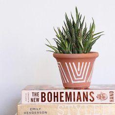 Terracotta Line Drawing Pot-Urban Greenhouse-Holistic Habitat Big Plants, Exotic Plants, Potted Plants, Painted Plant Pots, Painted Flower Pots, Paint Garden Pots, Painted Pebbles, Sacramento, Flower Pot Design