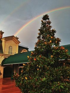 Rainbow over international gateway at Epcot in Walt Disney World
