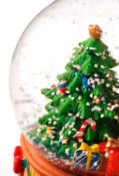 December Holiday Events in Madison, WI.