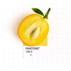 Les couleurs Pantone et les objets du quotidien… (image)