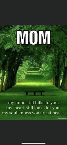 Mom I Miss You, I Miss You Everyday, Love Mom, Missing Mom In Heaven, Mom In Heaven Quotes, Mom Quotes From Daughter, Mom And Dad, In Loving Memory Quotes, Grief Poems