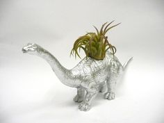 Silver Apatosaurus Dinosaur Planter with Air Plant by WhatJesseDid