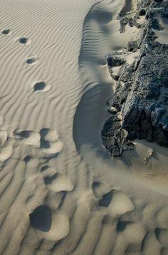 Noja-playa de Ris #Cantabria #Spain
