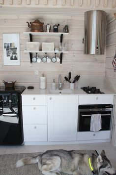 Small Cabin Kitchens, Home Kitchens, Cottage Design, House Design, Shed Decor, Home Decor, Summer House Interiors, Kitchen Decor, Kitchen Design