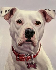 Oil Painting Still Life Realistic Paintings, Animal Paintings, Animal Drawings, Pitbulls, Oil Painting Pictures, Cute Animal Photos, Illustrations, Dog Portraits, Dog Art