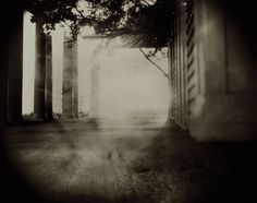 sally mann photos | the daily modern: sally mann