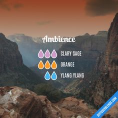 Ambience - Essential Oil Diffuser Blend