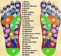 Bu Yazıdan Sonra Her Akşam Ayak Masajı Yapacaksınız. All nerves pass through our feet. To clear the negative energy in your body and have a peaceful day, you should apply one minute foot massage every Health Cleanse, Health Diet, Health And Wellness, Health Fitness, Yoga Pilates, Mudras, Foot Reflexology, Acupressure Points, Foot Massage