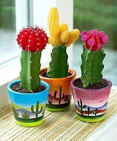 Cacti in Ornamental Mexican Pots Painted Plant Pots, Painted Flower Pots, Decorated Flower Pots, Flower Pot Art, Cactus Flower, Cacti And Succulents, Cactus Plants, Mini Cactus, Cactus Cactus