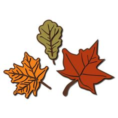 JMRush Designs: Autumn Leaves with Detail