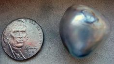 64.8 carat Natural USA Silver Pearl Freshwater    22 x 21 x 19mm