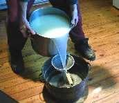 BEGINNING CHEESE MAKING » The Homestead Survival