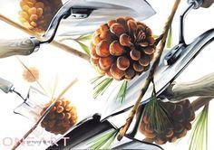 평촌 원아트 미술학원 기초디자인개체1 - 솔방울 개체2 - 모종삽 방금올려드렸던 사탕과 포크, 스푼을 소재...