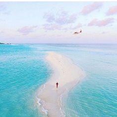 Reposting @viajesuniglobe: Etiqueta a alguien que le gustaría ir a #maldives  #viajesuniglobe #instagood #photooftheday #travel #instago #vacation #instatravel #travelgram #traveling #tourist #igtravel #visiting #viajero #viajera #viajeras #mochilero #mochileros #mochilera #turismo #viajesito #beach #vacation #photooftheday