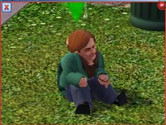 Most people know about the Sims, a casual life simulation videogame. This…
