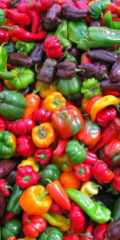 Colorful Peppers