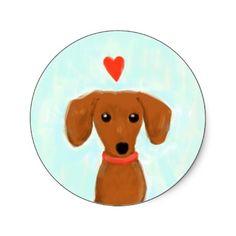 dear doxie  #dachshund #doxie