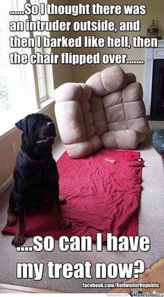 The one time I came home to the couch flipped over...It would NEVER be my Rottweiler! lol