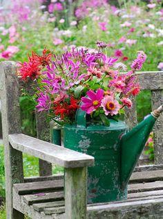 Vieil arrosoir transformé en pot à fleurs
