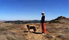 KQED article on great hikes with dogs - one for every region in the Bay Area