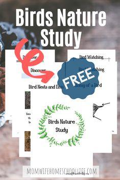 Free Bird Nature Study Packet 1