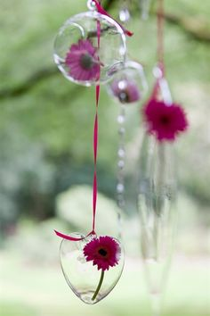 hanging flowers in glass globes