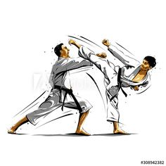 karate action 10 - Acquista questo vettoriale stock ed esplora vettoriali simili in Adobe Stock Akuma Street Fighter, Goju Ryu, Karate Kata, Kyokushin Karate, Fighting Poses, Karate Girl, Character Poses, Brazilian Jiu Jitsu, Picture Collection