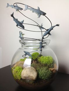 sharknado, terrarium, glass, shark, tornado