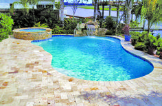 Free Form Pool Built By Blue Haven Pools Jacksonville Backyard