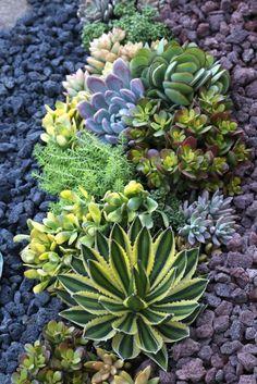 Genial mezcla de piedras de colores y plantas.